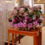 Decoration of lobby